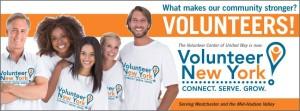 Volunteer NY Image
