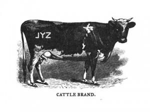 Branding - Not Just For Cattle.
